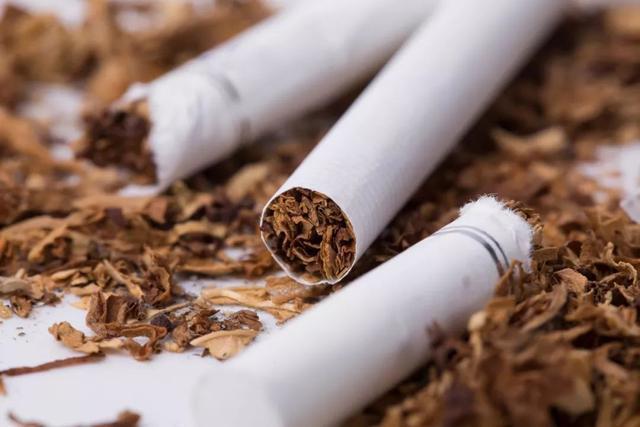 烟丝用的海绵头和烟纸,传统晒烟说说秋季对于烟丝的保存建议,关于手卷烟丝海绵头的长度剪切问题
