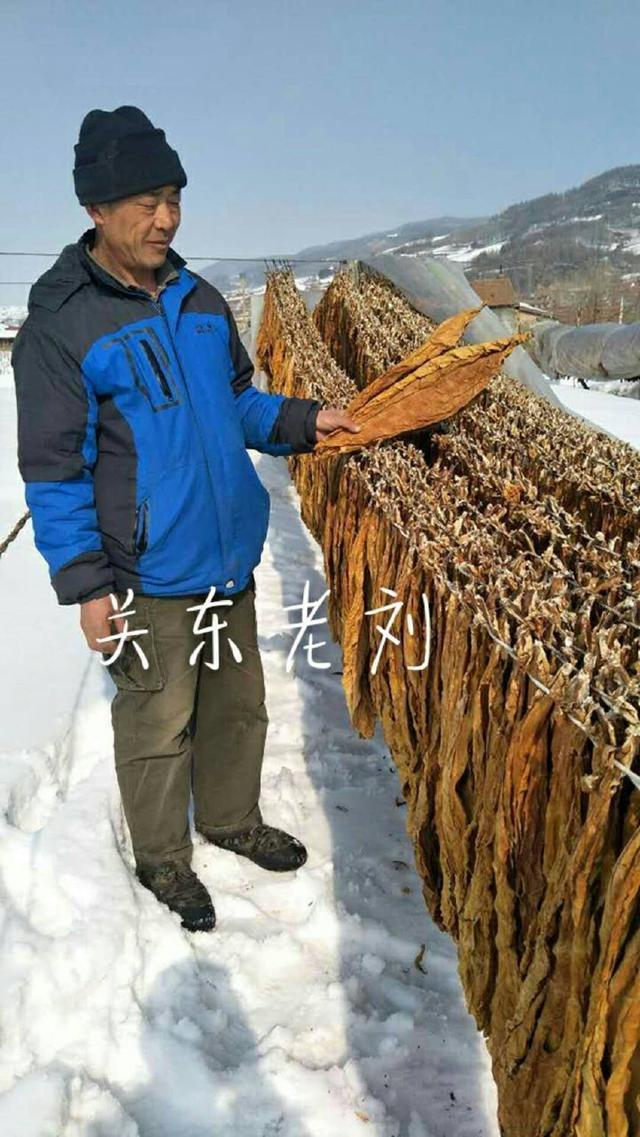 河北农村哪里有卖烟丝的?集市上卖的烟丝不好抽,批发各种烟丝散装烟丝在哪里买?千万不要网购手卷烟丝